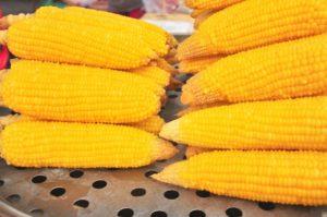как варить кукурузу5